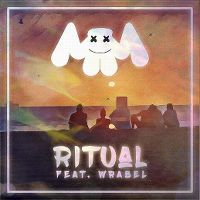 Cover Marshmello feat. Wrabel - Ritual