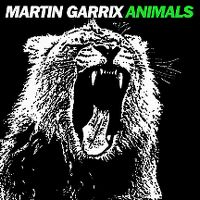Cover Martin Garrix - Animals