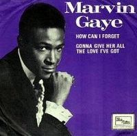 Cover Marvin Gaye - How Can I Forget