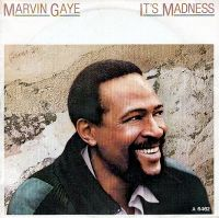 Cover Marvin Gaye - It's Madness