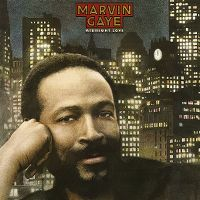 Cover Marvin Gaye - Midnight Love