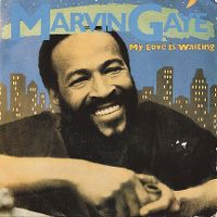 Cover Marvin Gaye - My Love Is Waiting