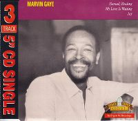 Cover Marvin Gaye - Sexual Healing