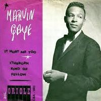 Cover Marvin Gaye - Stubborn Kind Of Fellow