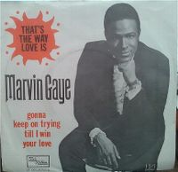 Cover Marvin Gaye - That's The Way Love Is