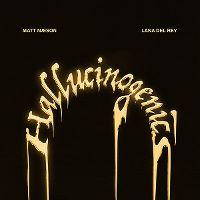 Cover Matt Maeson feat. Lana Del Rey - Hallucinogenics