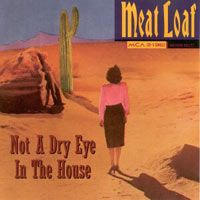 Cover Meat Loaf - Not A Dry Eye In The House
