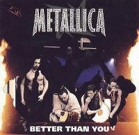 Cover Metallica - Better Than You