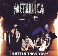 Cover Metallica - Better Than You