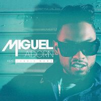 Cover Miguel feat. Jessie Ware - Adorn