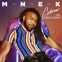 Cover MNEK feat. Hailee Steinfeld - Colour