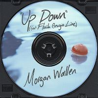 Cover Morgan Wallen feat. Florida Georgia Line - Up Down