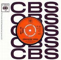 Cover Mott The Hoople - Honaloochie Boogie