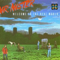 Cover Mr. Mister - Welcome To The Real World