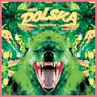 Cover Mr. Polska feat. Ronnie Flex - Ravotten