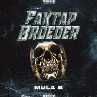 Cover Mula B - Faktap broeder