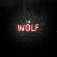 Cover Mumford & Sons - The Wolf
