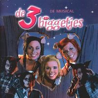 Cover Musical - De 3 biggetjes