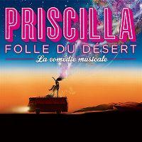 Cover Musical - Priscilla - Folle du désert