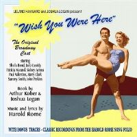 Cover Musical - Wish You Were Here
