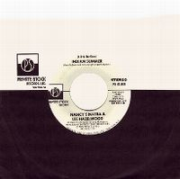 Cover Nancy Sinatra & Lee Hazlewood - Indian Summer