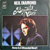 Cover Neil Diamond - Beautiful Noise