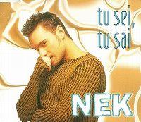 Cover Nek - Tu sei, tu sai