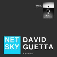 Cover Netsky & David Guetta - Ice Cold