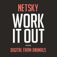 Cover Netsky feat. Digital Farm Animals - Work It Out