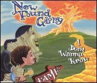 Cover New Found Glory - I Don't Wanna Know