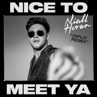 Cover Niall Horan - Nice To Meet Ya