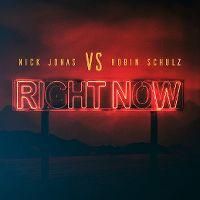 Cover Nick Jonas vs. Robin Schulz - Right Now