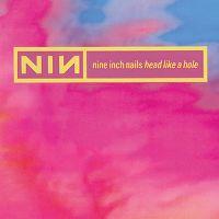 Cover Nine Inch Nails - Head Like A Hole