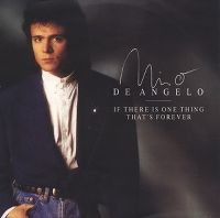 Cover Nino de Angelo - If There Is One Thing That's Forever