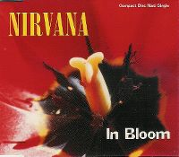 Cover Nirvana - In Bloom