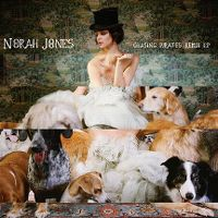 Cover Norah Jones - Chasing Pirates