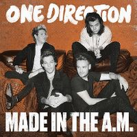 Cover One Direction - Made In The A.M.