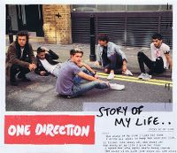 Cover One Direction - Story Of My Life