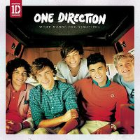 Cover One Direction - What Makes You Beautiful