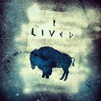 Cover OneRepublic - I Lived