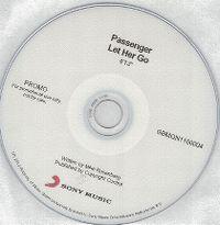 Cover Passenger - Let Her Go