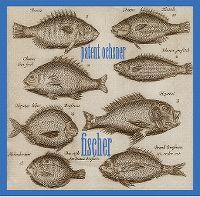 Cover Patent Ochsner - Fischer
