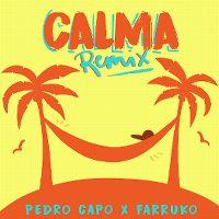 Cover Pedro Capó x Farruko - Calma (Remix)