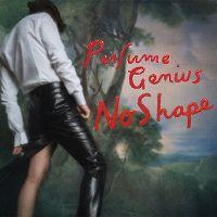 Cover Perfume Genius - No Shape