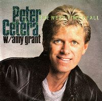 Cover Peter Cetera w/ Amy Grant - The Next Time I Fall