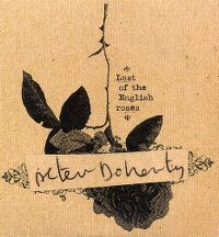 Cover Peter Doherty - Last Of The English Roses