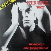 Cover Peter Gabriel - Biko (deutsch)