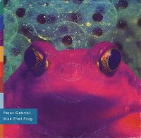 Cover Peter Gabriel - Kiss That Frog