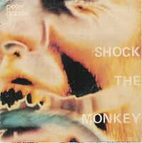 Cover Peter Gabriel - Shock The Monkey