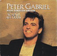 Cover Peter Gabriel - Walk Through The Fire